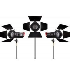Aputure Amaran LS-mini 20d / mini20c 3x Lampen mit hinter