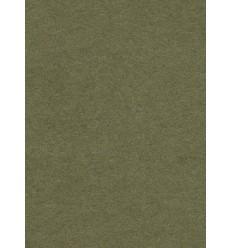 Hintergrund Papier - Farbe: 10 Blatt - extra starke 6,2 kg Taste Qualität 200 gr. pr. kvm.