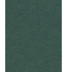 Hintergrund Papier - Farbe: 12-Fichten-Grün - extra-starken 6,2 kg Taste Qualität 200 gr. pr. kvm.