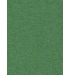 Hintergrund Papier - Farbe: 31-Appeal Grün - extra-starken 6,2 kg Taste Qualität 200 gr. pr. kvm.