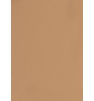 Hintergrund Papier - Farbe: 004 Braun - 2,72 x 11m und 155 gr. pro qm. 0