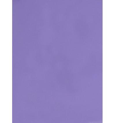 Hintergrund Papier - Farbe: 002 Lila - 2,72 x 11m und 155 gr. pro qm. 0