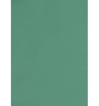 Hintergrund Papier - Farbe: 067-dunkelgrün - 2,72 x 11m und 155 gr. pro qm. 0