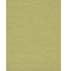 Hintergrund Papier - Farbe: 13 Tropisches Grün - der extra starke 6,2 kg Taste Qualität 200 gr. pr. kvm.