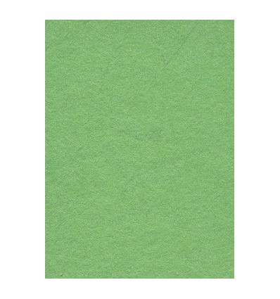 Hintergrund Papier - Farbe: 63 Sommer Grün - extra-starken 6,2 kg Taste Qualität 200 gr. pr. kvm. 2
